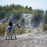 Classic Pärnu ilahdutti hevosharrastajia