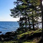 Ilmastokriisi pahentaa merten ahdinkoa – muutokset näkyvät jo Itämerellä