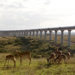 Kiinan kokonaisuudessaan rahoittama ja rakentama 1,5 miljardin ratahanke valmistunut Keniassa