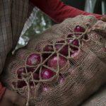 Intiassa varkaat tyhjensivät rekan, johon oli lastattu 40 tonnia sipulia