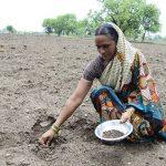 Lindex tukee naispuolisia puuvillanviljelijöitä koulutuksen avulla