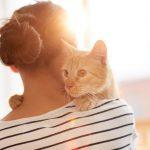 Näin kissa tekee omistajastaan onnellisemman