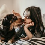 Koiran kanssa kotikaranteenissa – 4 vinkkiä mitä voitte tehdä yhdessä