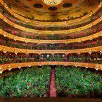 Barcelonan oopperatalo avattiin uudelleen - yleisönään 2292 huonekasvia