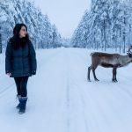 Pohjoismainen elämäntyyli – onko sellaista olemassakaan?